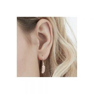 Feather Hook Earrings in Silver